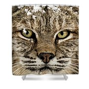Bobcat Whiskers Shower Curtain