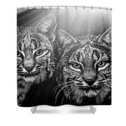 Bobcats Shower Curtain