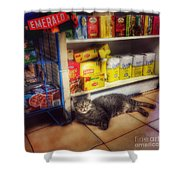 Bodega Cat - At Home In New York Shower Curtain