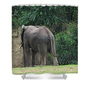 Body Language II Shower Curtain