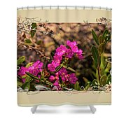 Bog Laurel Flowers Shower Curtain