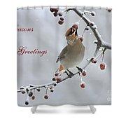 Bohemian Seasons Greetings Shower Curtain