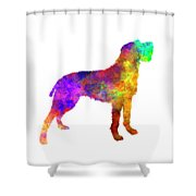 Bohemian Wirehaired Pointing Griffon In Watercolor Shower Curtain