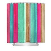 Boho Stripe- Art By Linda Woods Shower Curtain