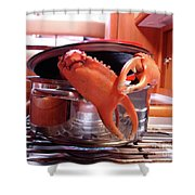 Boiled Crab Shower Curtain