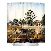 Bois De Fleche Plantation Louisiana 1861 Shower Curtain
