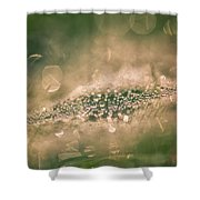 Bokeeh Of Pearls Shower Curtain