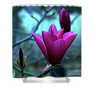 Bold Delicacy Shower Curtain