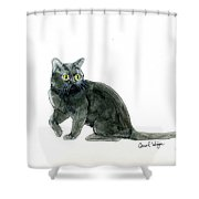 Bombay Cat Shower Curtain