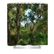 Bon Secour Trail Shower Curtain