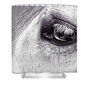 Bonbon's Eye Shower Curtain