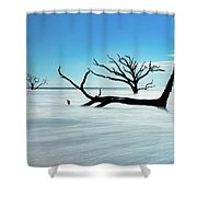 Boneyard #2 Shower Curtain