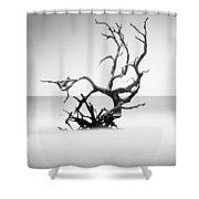 Boneyard Beach X Shower Curtain