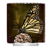 Boneyard Butterfly Shower Curtain