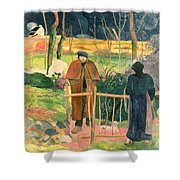 Bonjour Monsieur Gauguin Shower Curtain