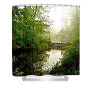 Bonneyville Mill Waterfall Shower Curtain