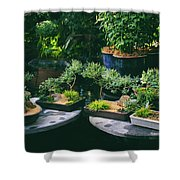 Bonsai Afloat Shower Curtain