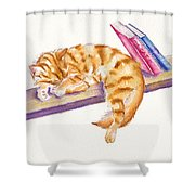 Bookend Shower Curtain