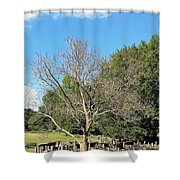 Booker T Washington Hog Pen Shower Curtain