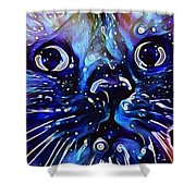 Boo's Midnight Dream Shower Curtain