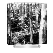 Boranup Ghosts Shower Curtain