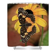 Bordered Patch Shower Curtain