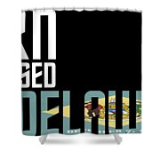 Born And Raised In Delaware Birthday Gift Nice Design Shower Curtain