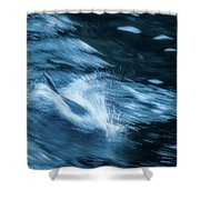 Born For Speed Shower Curtain