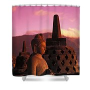 Borobudor Temple Shower Curtain
