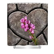 Boronia Love Shower Curtain