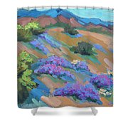 Borrego Springs Verbena Shower Curtain