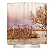 Bosque Winter II Shower Curtain