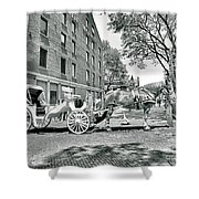 Boston Buggy Shower Curtain