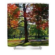 Boston Public Garden Autumn Tree Morning Light Walk In The Park Shower Curtain