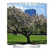 Boston Public Garden Spring Tree Boston Ma Shower Curtain