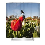 Boston Public Garden Tulips And George Washington Statue Shower Curtain
