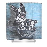 Boston Terrier Mom And Pups Shower Curtain
