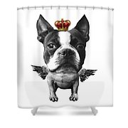 Boston Terrier, The King Shower Curtain