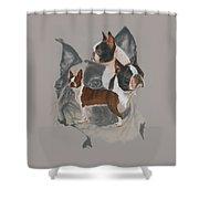 Boston Terrier Revamp Shower Curtain