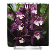 Botanic Garden Orchid Bouquet 5 Shower Curtain
