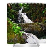 Botanic Gardens Waterfall Shower Curtain