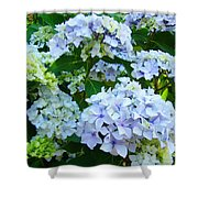 Botanical Art Prints Floral Hydrangea Flower Garden Baslee Shower Curtain