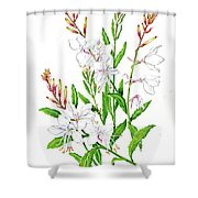 Botanical Illustration Floral Painting Shower Curtain