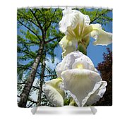 Botanical Landscape Trees Blue Sky White Irises Iris Flowers Shower Curtain