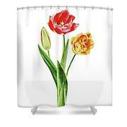 Botanical Tulip Bouquet Watercolor Shower Curtain