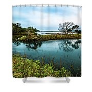Botany Bay Marshland Shower Curtain