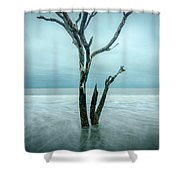 Botany Bay Plantation Edisto Island Sc Shower Curtain