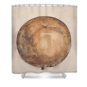 Botany: Mammee, 1585 Shower Curtain