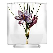 Botany: Saffron Shower Curtain by Granger
