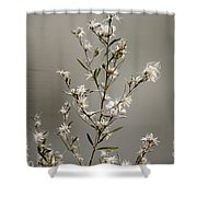 Botswana Wildflower  Shower Curtain